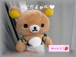 ちこちゃんのあさがお観察日記★7★つぼみ??-1