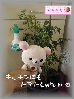 ちこちゃん日記★104★みんな避難でしゅ♪-3