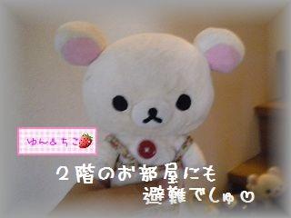 ちこちゃん日記★104★みんな避難でしゅ♪-4