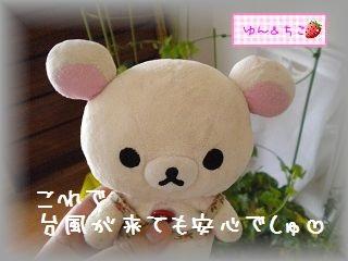 ちこちゃん日記★104★みんな避難でしゅ♪-6
