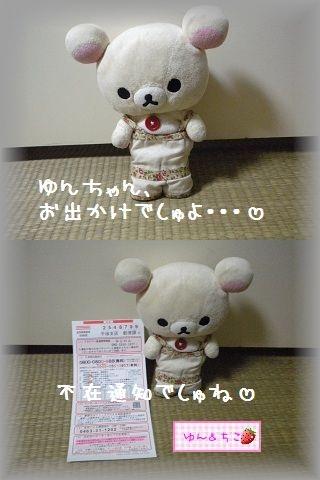 ちこちゃん日記★106★夜のおでかけの理由は・・・-1