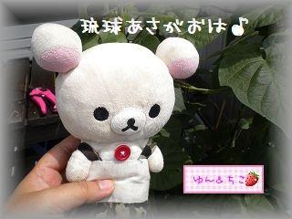 ちこちゃんのあさがお観察日記★8★もうすぐ咲くかな-4
