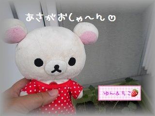 ちこちゃんのあさがお観察日記★10★最初のお花♪-1