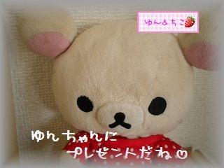 ちこちゃん日記★107★うれしいフライング♪-5