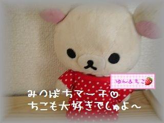ちこちゃん日記★107★うれしいフライング♪-6