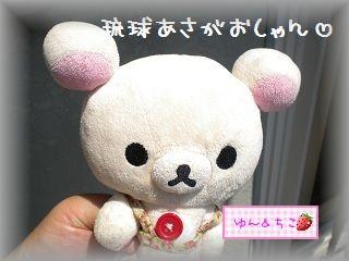 ちこちゃんのあさがお観察日記★14★大きくなってるよぉ~-1