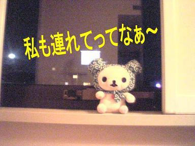 VFSH0101.jpg