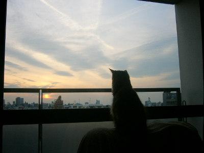 01_sky.jpg