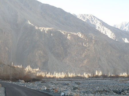 Nubra and Pangong 2011 Dec (9)