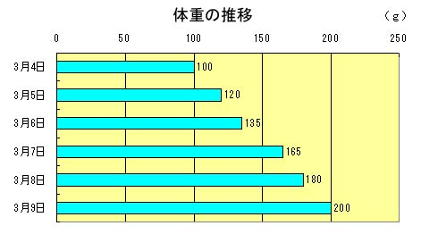 20070309224710.jpg
