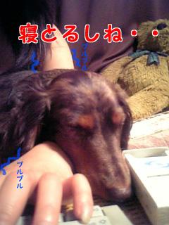 060731_224210_M.jpg